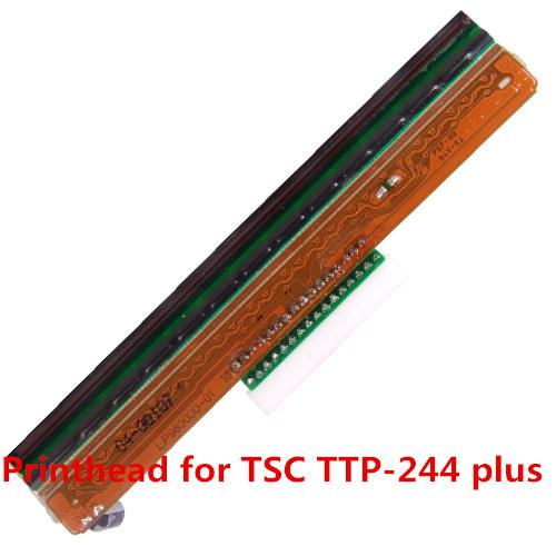 TTP 244Plus Head